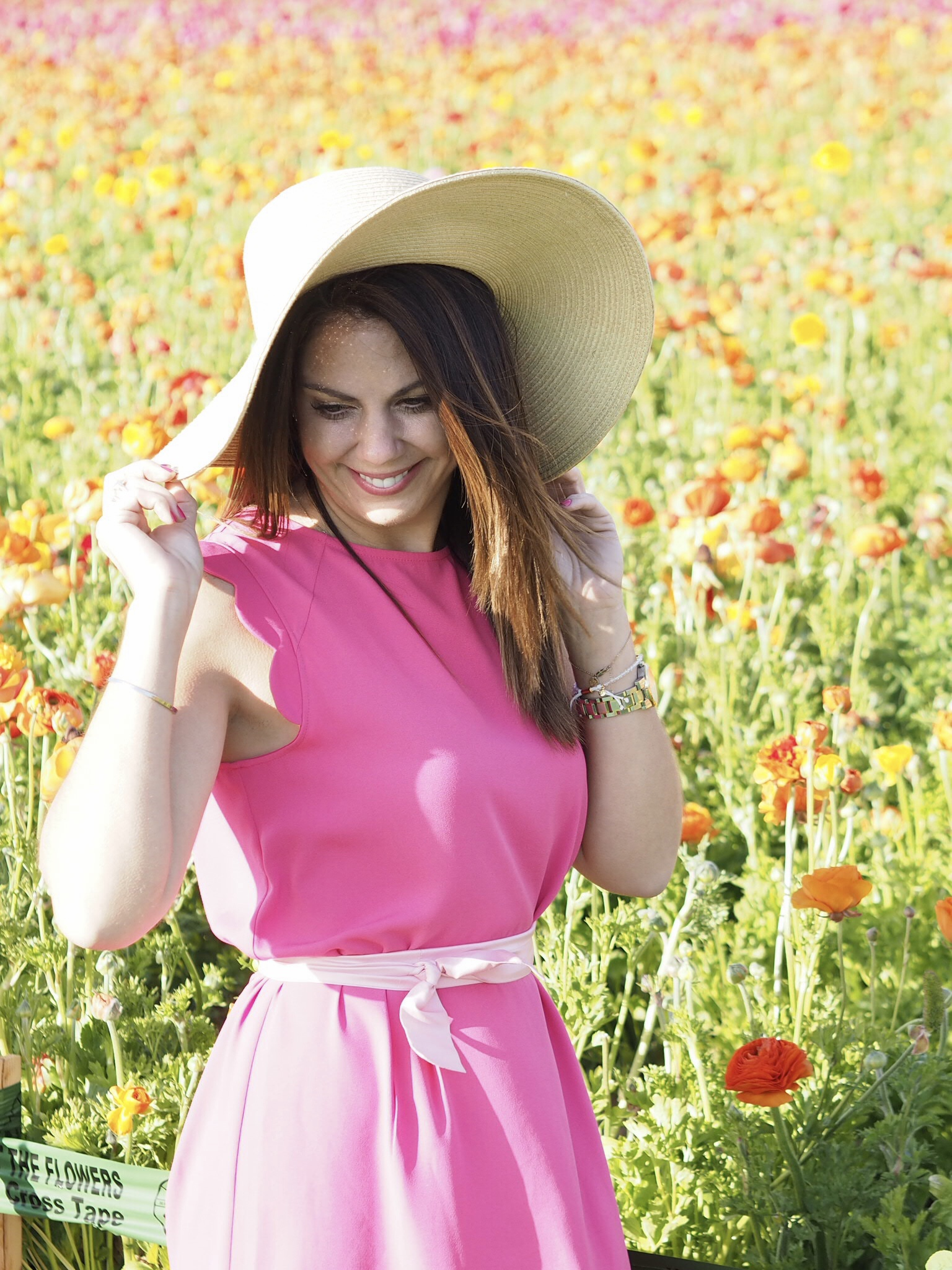 San Diego Adventures: The Flower Fields at Carlsbad Ranch - The ...